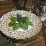 Tortellini di quaglia in sfoglia verde di borragine su fonduta di parmigiano