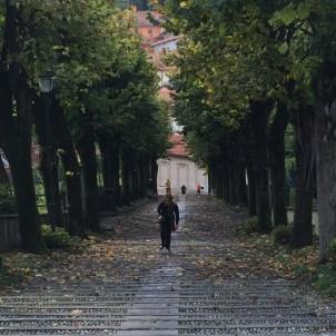 Montevecchia steps