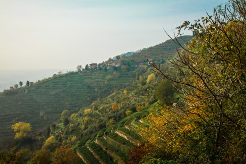 Parco-Regionale-di-Montevecchia-Lombardia-Giorgio-Badaini-2