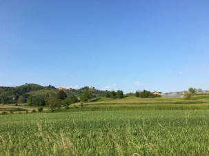 On the road home - Montevecchia church in the distance