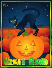 Pumpkin_Patch_Great_Send_gif