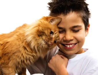 A young boy hugging his orange cat