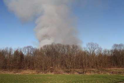 06032015 incendio parco groane foto di matteo turconi (1)