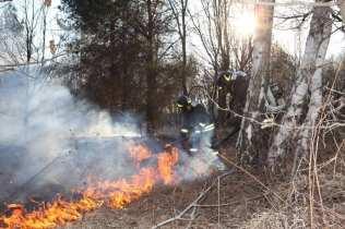 06032015 incendio parco groane foto di matteo turconi (10)