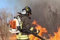 06032015 incendio parco groane foto di matteo turconi (17)