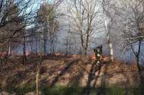 06032015 incendio parco groane foto di matteo turconi (2)