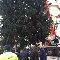 lazzate-albero-natale-10