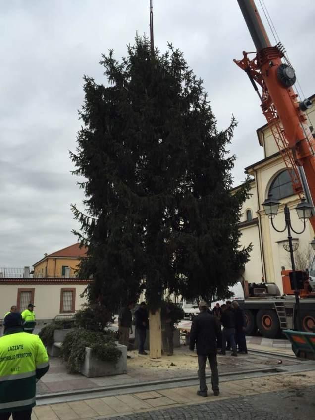 lazzate-albero-natale-12