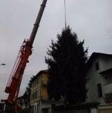 lazzate-albero-natale-4