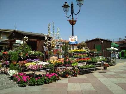 20180422 mercatini di primavera (1)