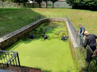 20180513 fontanile gerenzano pulizia (1)