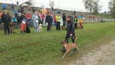 mondiali iro cani 23092018 lubiana (4)