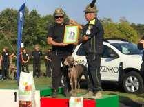 campionato alpini cani da soccorso 2018 cogliate (4)