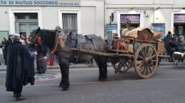 20180113 cavallo imbizzarrito coteo sant'antonio