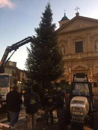 20191129 albero di natale saronno (1)