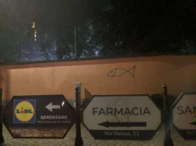20200114 pesciolini graffiti (2)