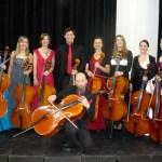 CCSO cellos