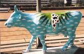Soos Kaapstad het Buenos Aires ook 'n koeiparade