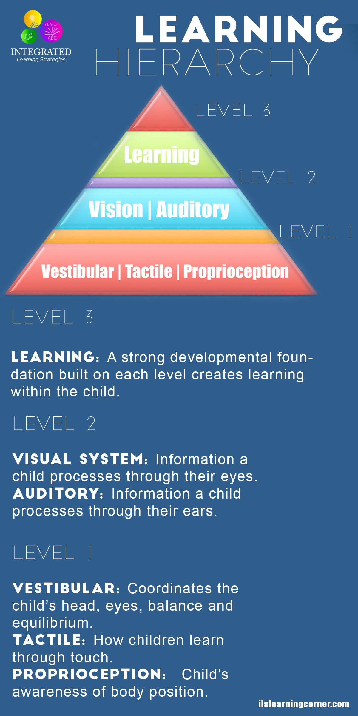 Sensory Systems That Make Up The Learning Hierarchy Of A
