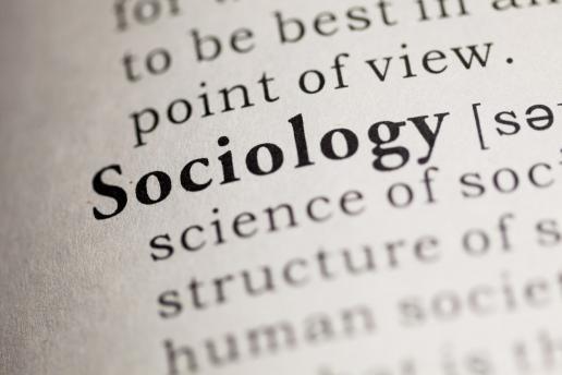 La disoccupazione della sociologia