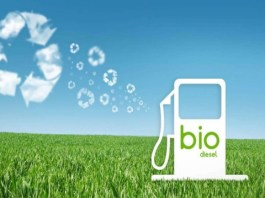 Biodiesel come fonte energetica alternativa