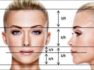 proporzioni del volto ideale