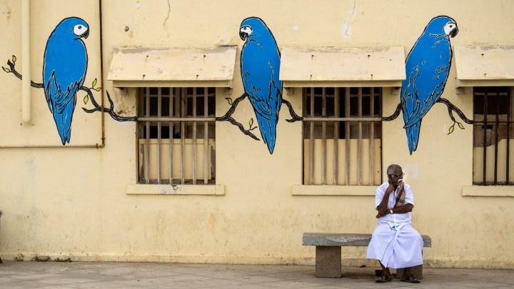 Street-art sur un mur de Pondichéry