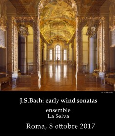 La Selva early wind