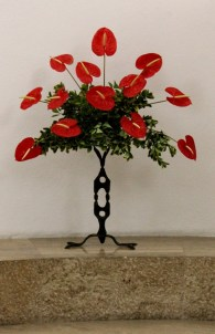 Florilegium_31-5-18_41