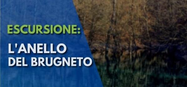 Lago del Brugneto, sentieri