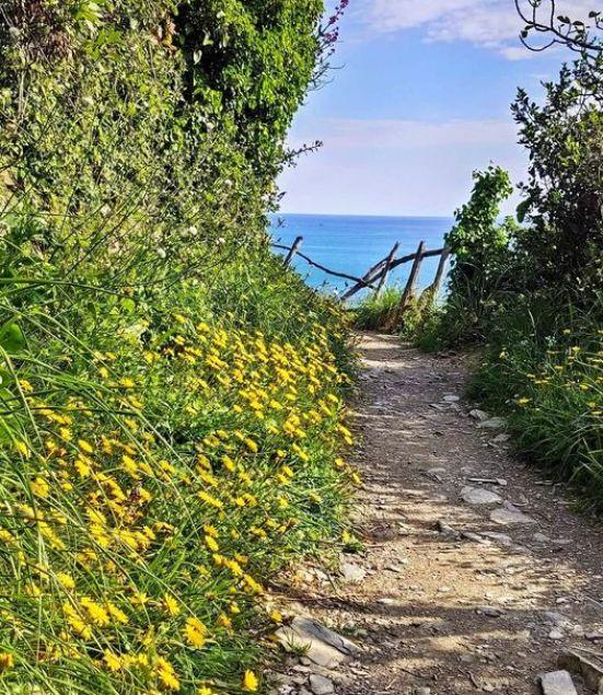 Sentiero per Punta Manara
