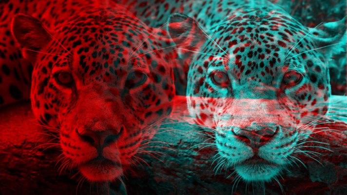 Copycats versus disruptors in Latin America