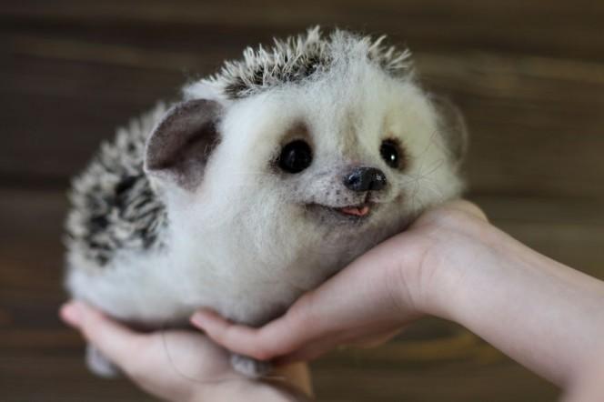 10 Gambar Bayi Haiwan Yang Akan Menceriakan Cuti Anda