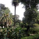 Museu_Arte_Espanhola_Evita_Perón_Eva_Figurino_Vestido_Traje_Patrimônio_Histórico_Buenos Aires_Argentina_Belgrano_Jardim
