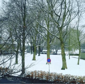 snow3-17