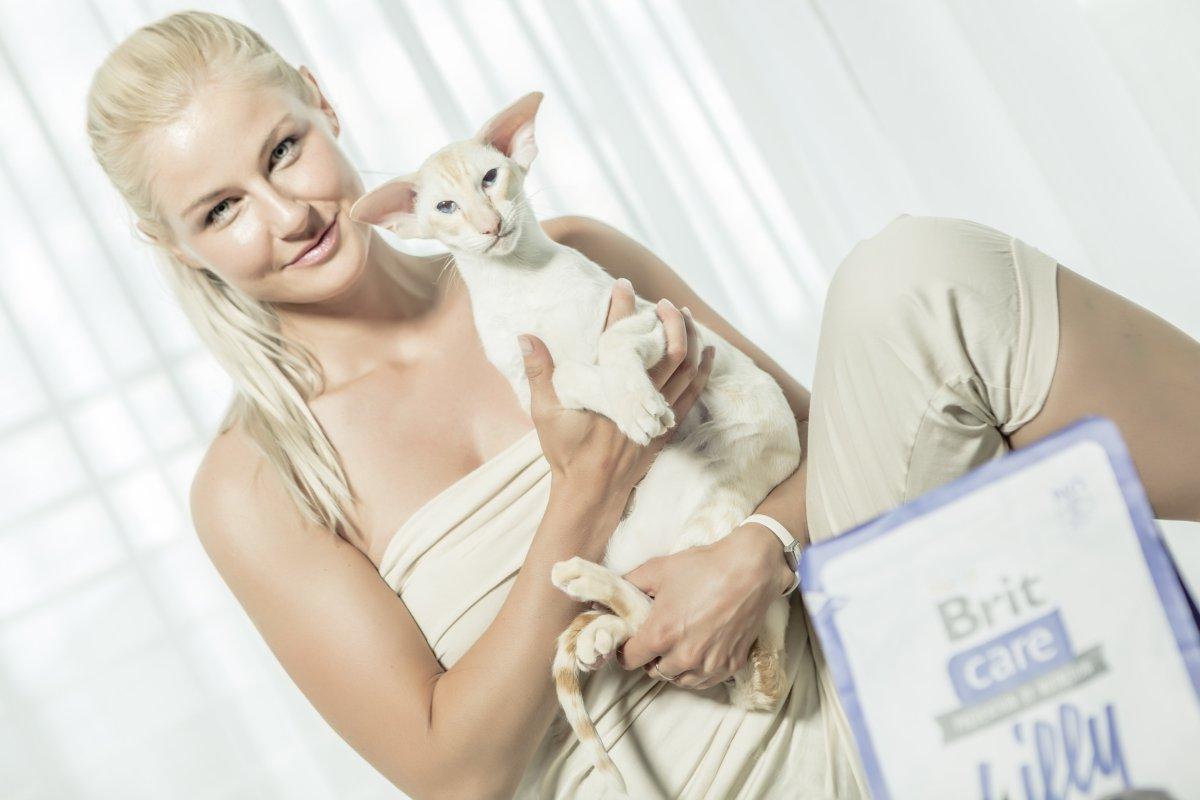 Brit Care Cat - image_3