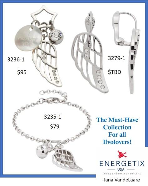 wing jewelry 2