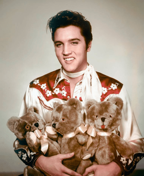Elvis and Teddy Bears