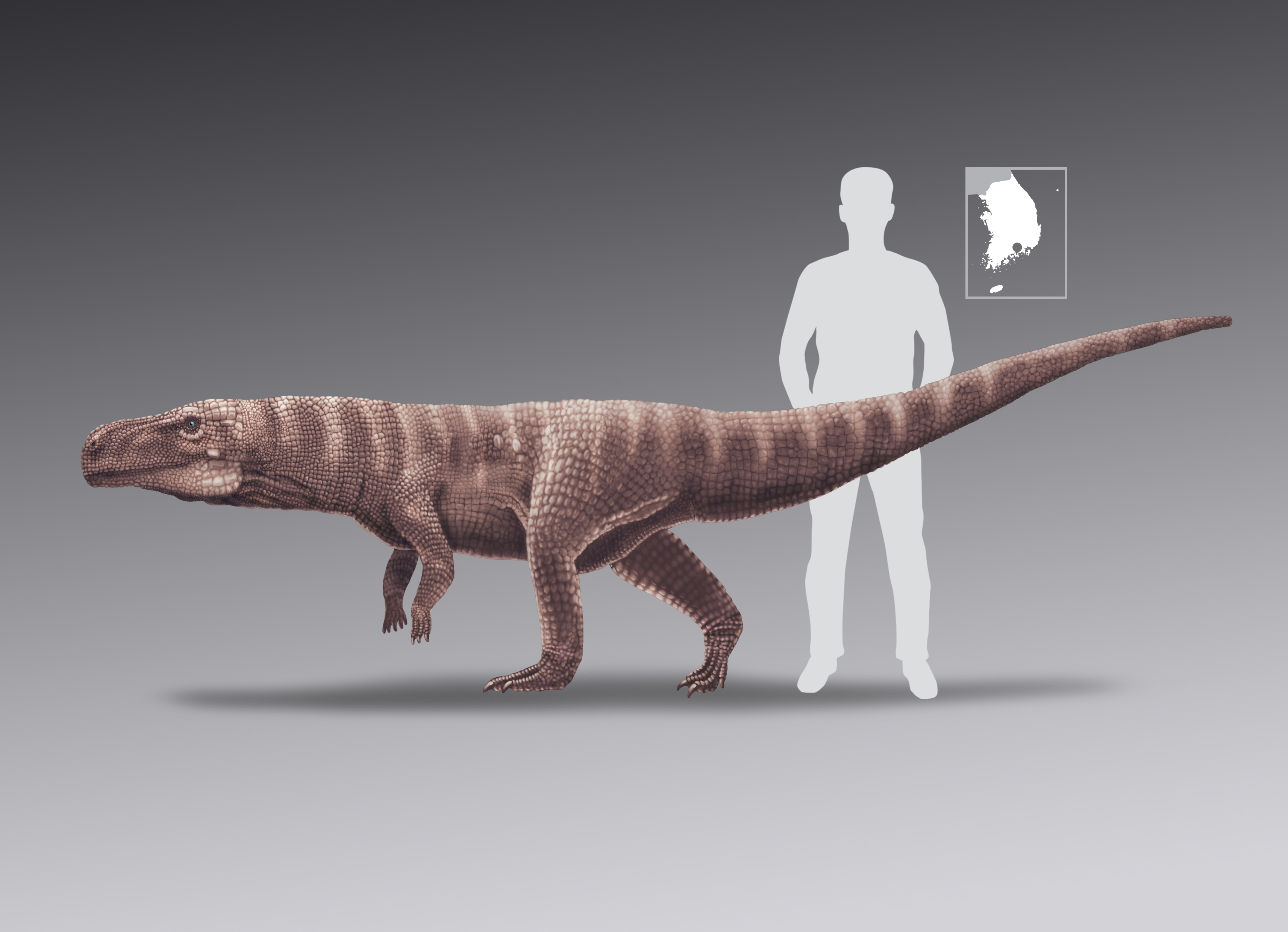 Photo of Ancient Crocodile Ancestor Walked on Two Legs, New Study Says