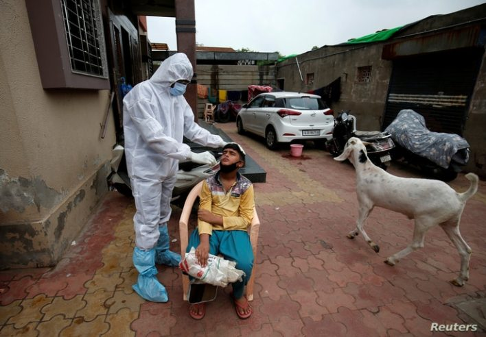 A healthcare worker wearing protective gear takes swab from a boy for a rapid antigen test past a goat, amidst the coronavirus…