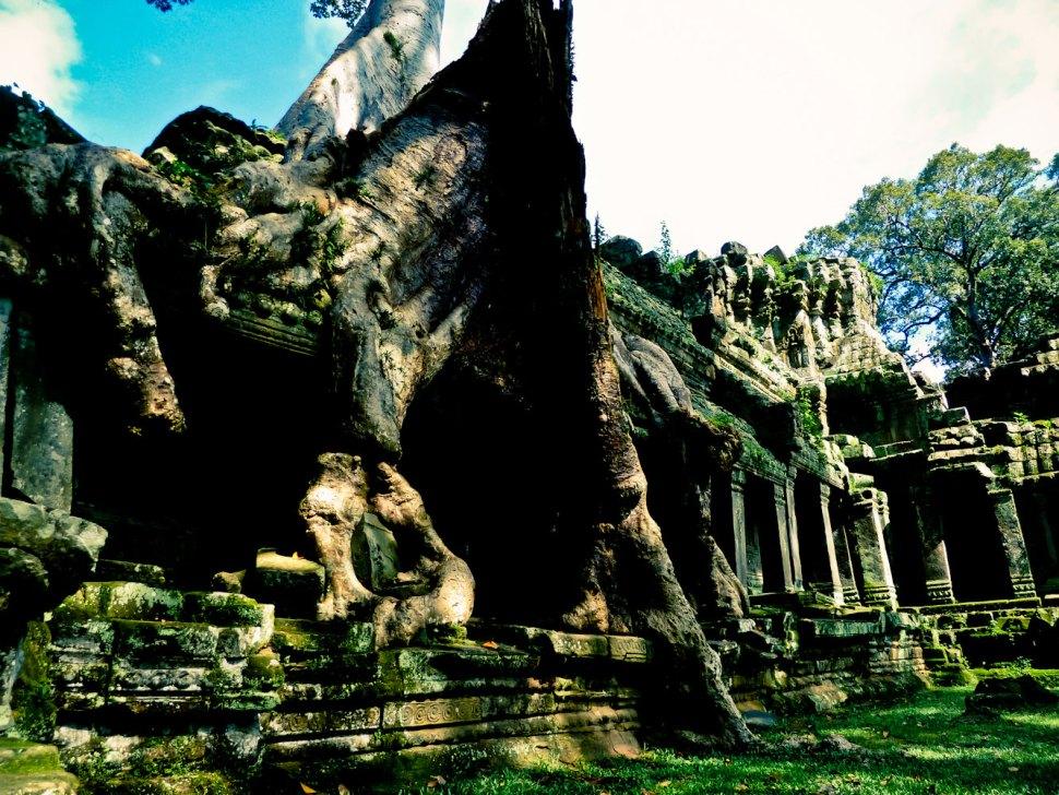 Cambodia (163 von 1242)