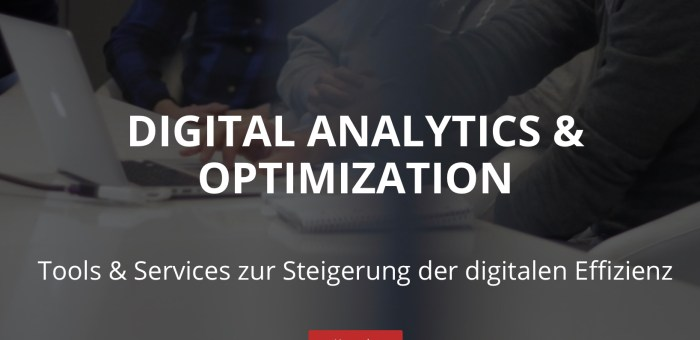 Gastvortrag von Dennis Balfanz zu Informationsmanagement in der digitalen Analyse