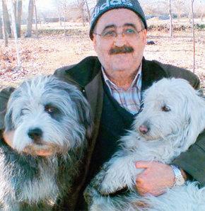 İki süs köpeği yüzünden işinden oldu