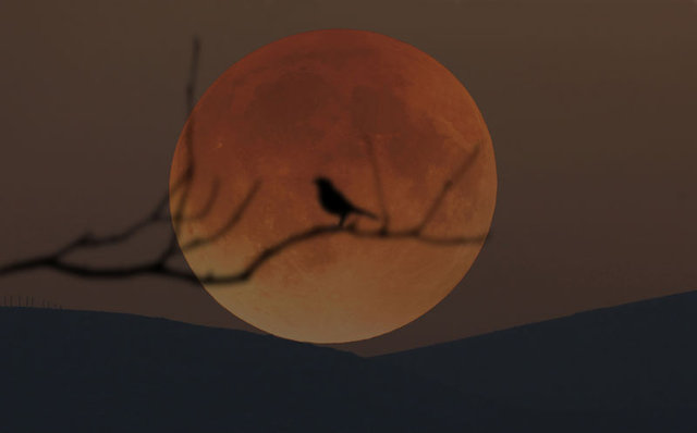 Tam ay tutulması 'Süper Ay' Türkiye'yi büyüledi! - İşte Süper Kanlı Mavi Ay Tutulması