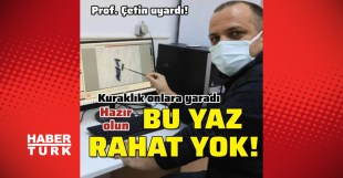 Sleep will be haram!  Last minute: Flies will cover everywhere this summer – Habertürk