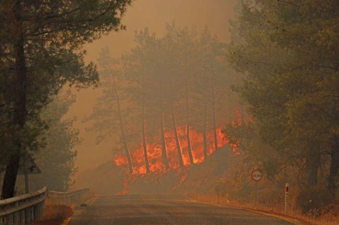 Türkiye'deki yangınlar son dakika: Yangınlarda son durum nedir? Yangınlar söndürüldü mü? 14
