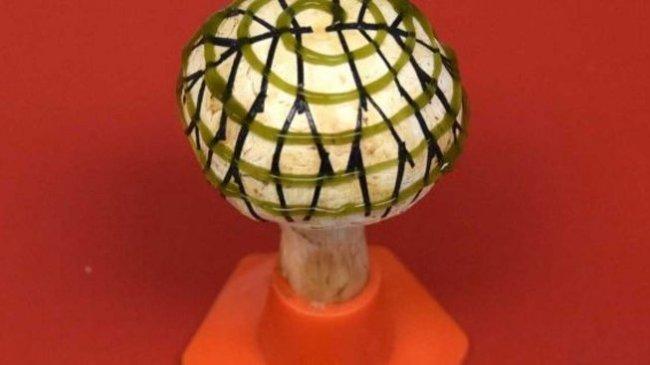 Bionická houba