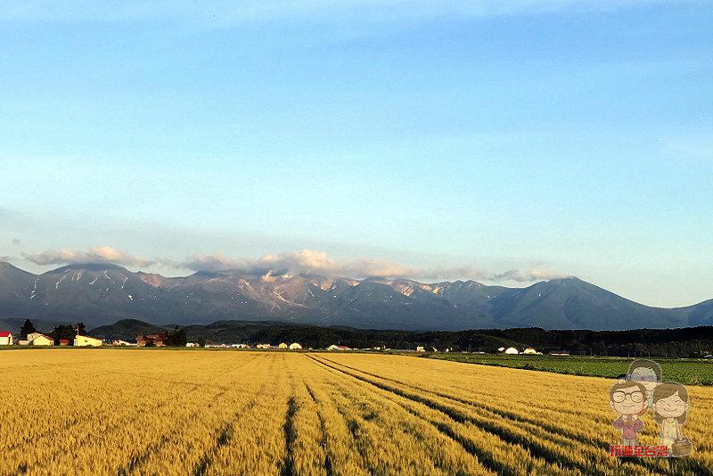 北海道|夏日的美瑛,絕景的拼布之路!還有蒂芬妮藍的青池和白鬍瀑布