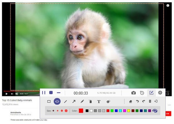 AnyMP4 Screen Recorder 2.0.12 for Mac
