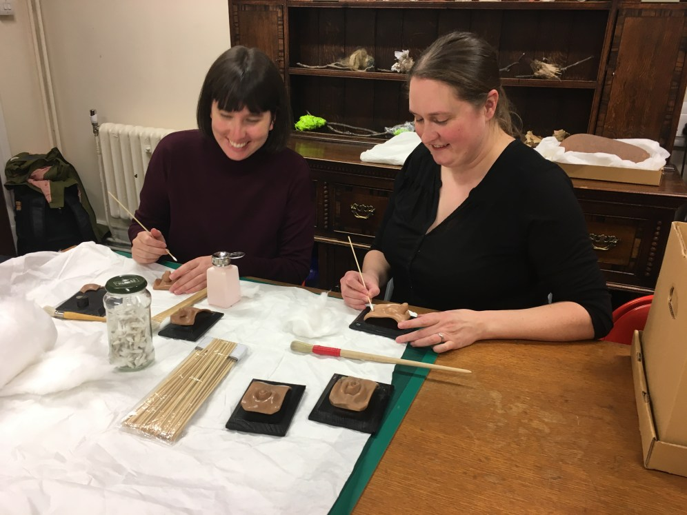 Cleaning Ziegler anatomical wax models with Collection Manager Clare